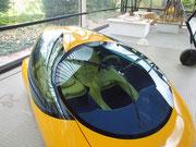 Auch das Innen-Design wird im fliessenden Bio-Design gebaut