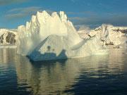 und jeder «vorbeiziehende» Eisberg hat uns begeistert
