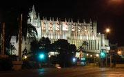 Letzter Blick auf das hell beleuchtete Wahrzeichen von Palma de Mallorca