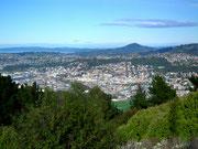 Blick auf die Großstadt Dunedin mit 125'000 Einwohnern