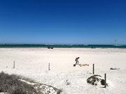 Viel zu sehen: «Kite-Surfer», also Surfen und Segeln mit großen Lenkdrachen