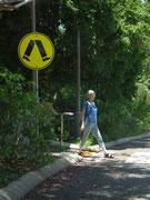 Falsches Bein vorne. Noch nicht an den Links-Verkehr in Australien angepasst