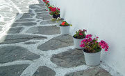 Am Wegesrand hübsche Blumentöpfe