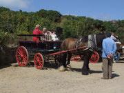 und die Pferdefuhrwerke bleiben auf der Hauptinsel Sark «parkiert»