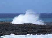 La Réunion ist eine Vulkaninsel mit immer noch sehr aktiven Vulkanen. Die dunkle Lava . . .