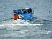 Mit solchen Amphibien-Bussen fahren wir zum Elisabeth Castle . . .