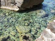 . . . mit dem klaren Wasser und den wunderschönen See-Igeln