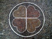 Vierblättriges Kleeblatt mitten in der Stadt gefunden.
