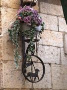 Schöne Blumenampel mit dem Stadtwappen von Grasse