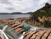für den Export-Handel der Holzindustrie