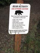 Zur Erinnerung: Verhaltensregeln gegenüber Bären