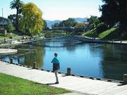 Auf dem gegenüberliegenden Ufer ebenfalls ein schön angelegter Spazierweg
