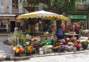 Blumenmarkt am Brunnen auf der Place aux Aires