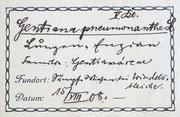 Etikett Herbar-Beleg Lungen-Enzian (1908)