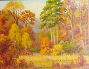 Clairière dans la forêt 50x60 HST