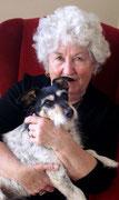Ein Hund als Partner im Alter