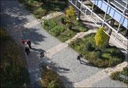 Aussenanlagen an der Universität Ulm, Latz + Partner