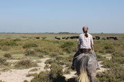 Ausritt Camargue - © France Fascination