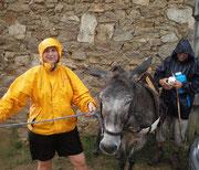 Sous la pluie , Betty et ses compagnons, imperturbables ... !!