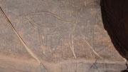 Gravure rupestre: gnou ?