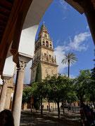 Le minaret-tour de la cathédrale-mosquée