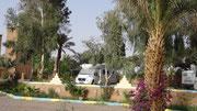 """Emplacement au camping """"Les jardins de Zagora"""""""