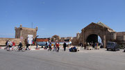Essaouira : dans le port