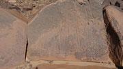 Gravure rupestre: cherchez les 2 flamants