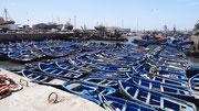 Essaouira : la flottille des barques