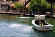 Der weiße Hai - Universal Studios Hollywood