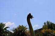 Jurassic Park - Universal Studios Hollywood
