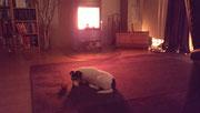 Charleen liebt die Wärme aus dem Bollerofen.