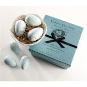 Gianna Rose Robin's eggs in a nest