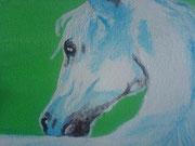 Der Kopf des Pferdes