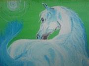 Weisser Araber Hengst 30 cm x 40 cm Acryl auf Leinwand