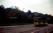 Betriebshalt Rosenhof, Richtung Zentralhaltestelle, Tw 332, Linie 8