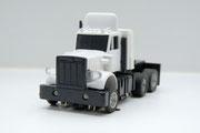 Peterbilt Truck gelaugt weiß