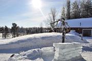 Die Eisbar in der Sonne