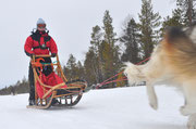 In voller Fahrt durch Lappland