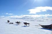 Unendliche Weiten in Lappland