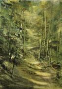 Sous bois d'Auvergne 1 - 25x35 cm