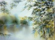 Forêt noire - 35x25 cm