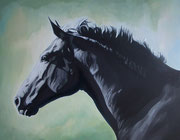 """Black Beauty"" Acrylic on canvas 45x 35cm"
