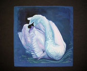 """Evening Swan"" Gouache on Blackboard 35x30cm"