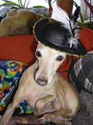 Annabelle ist Madame Pompadour.....