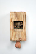 Kiste 13, Bulle-Hoden, Ulmenholz, 2012