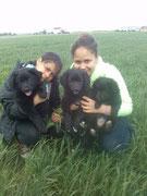 Bella, Cloe, Lilli