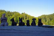 Aika, Lausbua, Sally, Timo und Hexe auf dem Steg