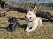 Sally und Jamaina 08.03.11
