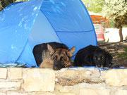 Cindy und Timo in Kroatien